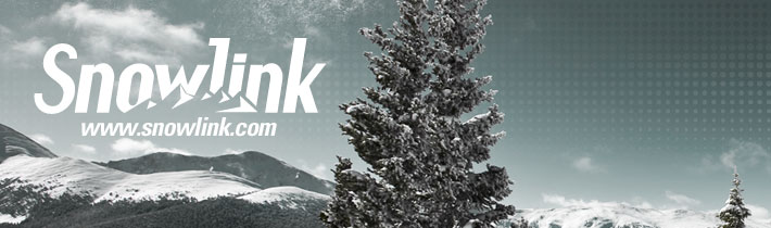 Snowlink Internet Marketing Campaign Header