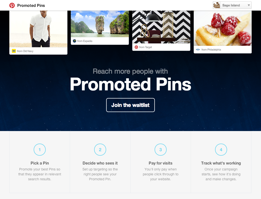 Pinterest-Promoted-Pins