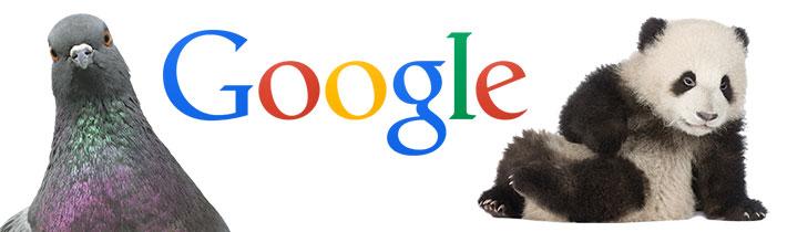 Google-pigeon-panda-updates