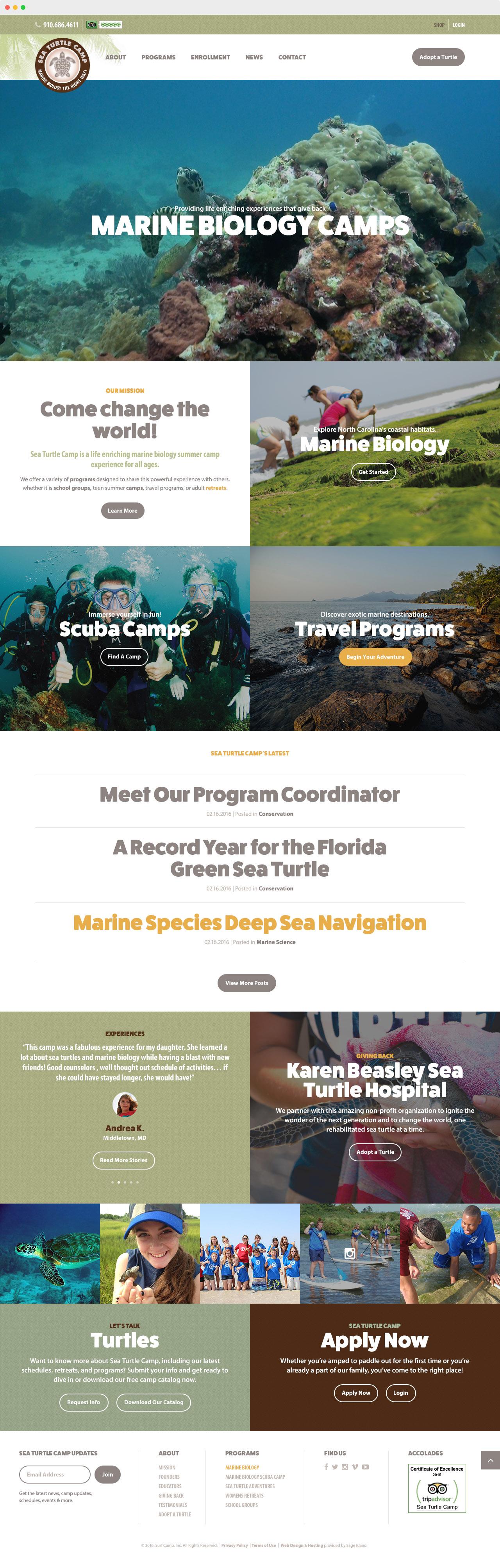 sea-turtle-camp-marine-bio-programs-website-design