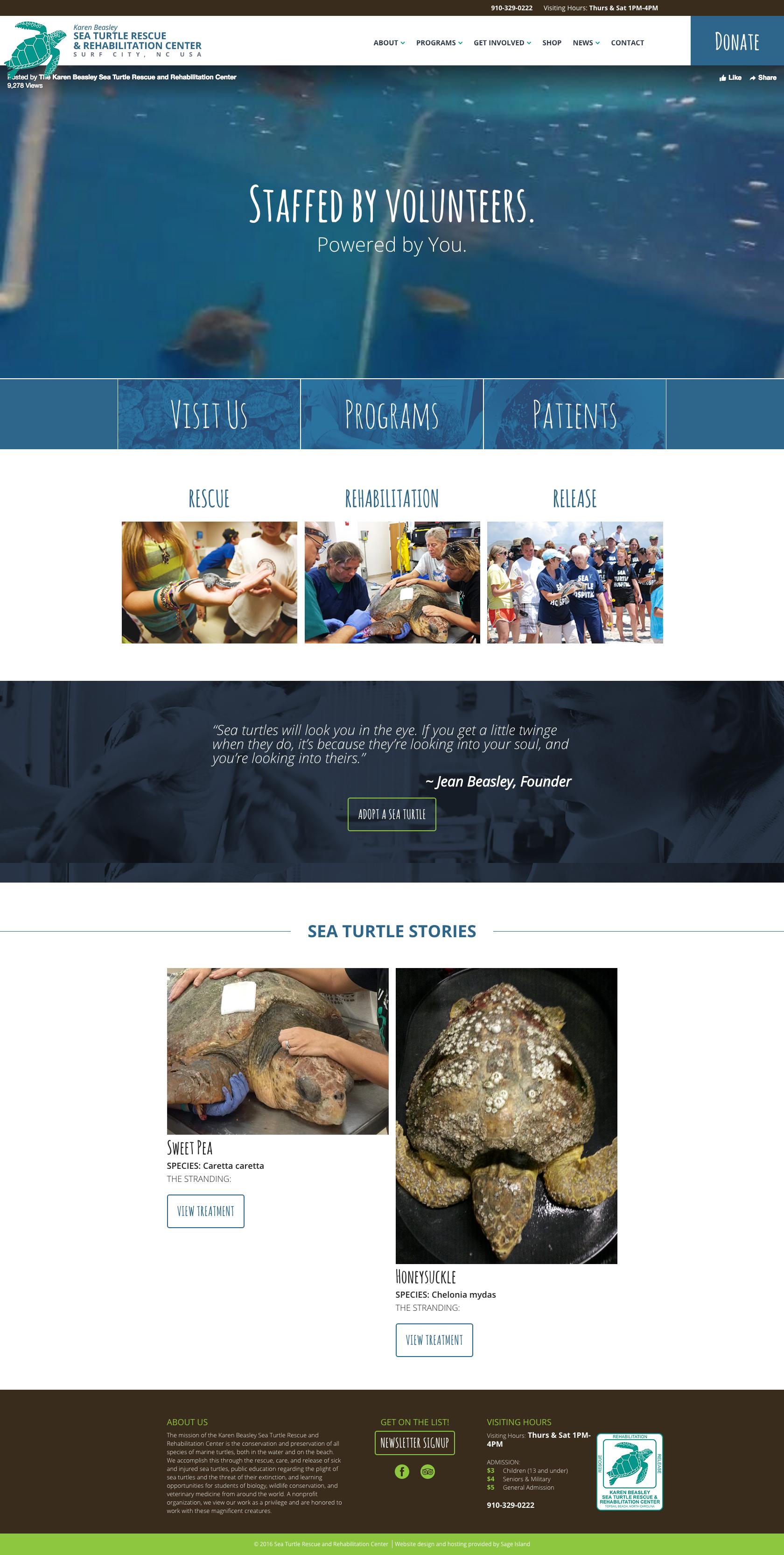 karen-beasley-sea-turtle-hospital-website-design